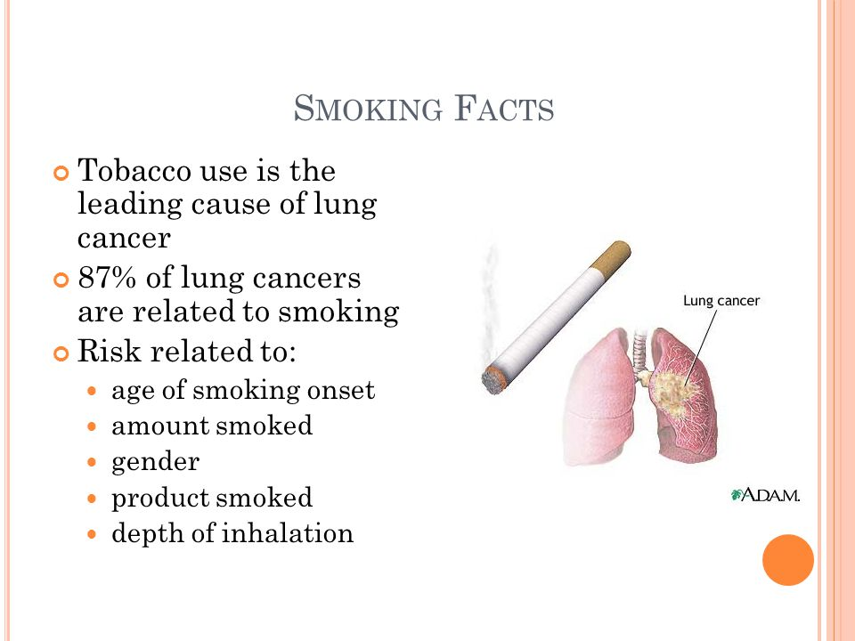 S MOKING F ACTS Tobacco use is the leading cause of lung cancer 87% of lung cancers are related to smoking Risk related to: age of smoking onset amount smoked gender product smoked depth of inhalation