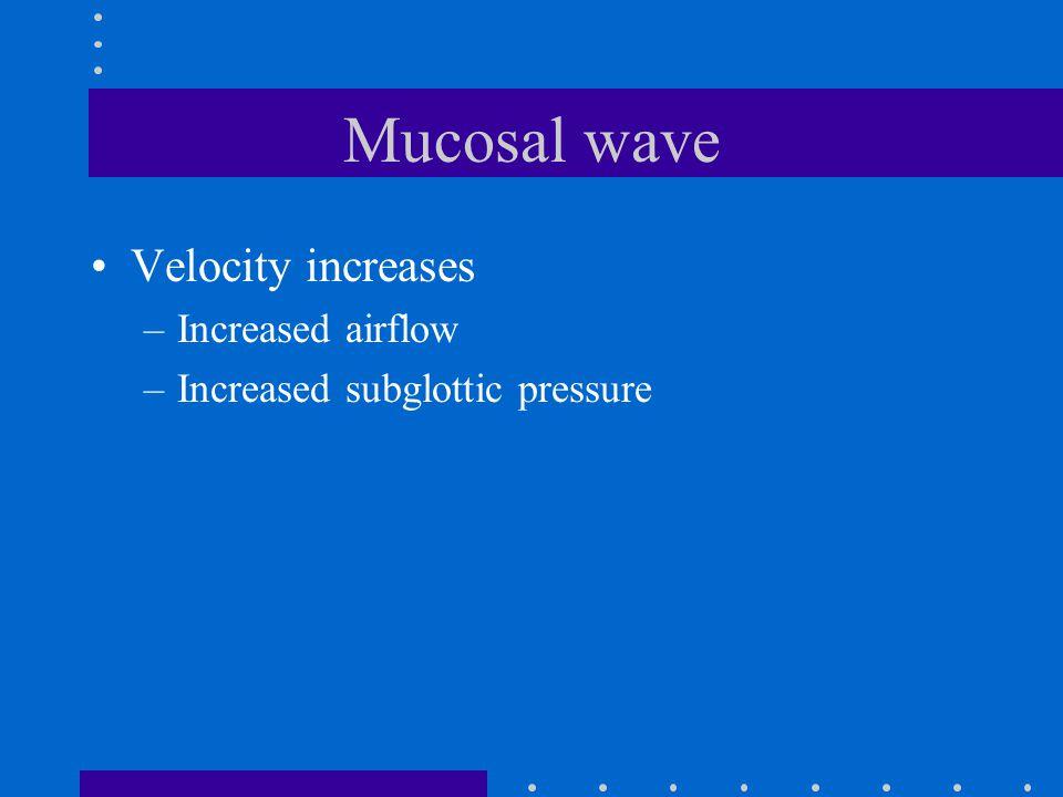 Mucosal wave Velocity increases –Increased airflow –Increased subglottic pressure