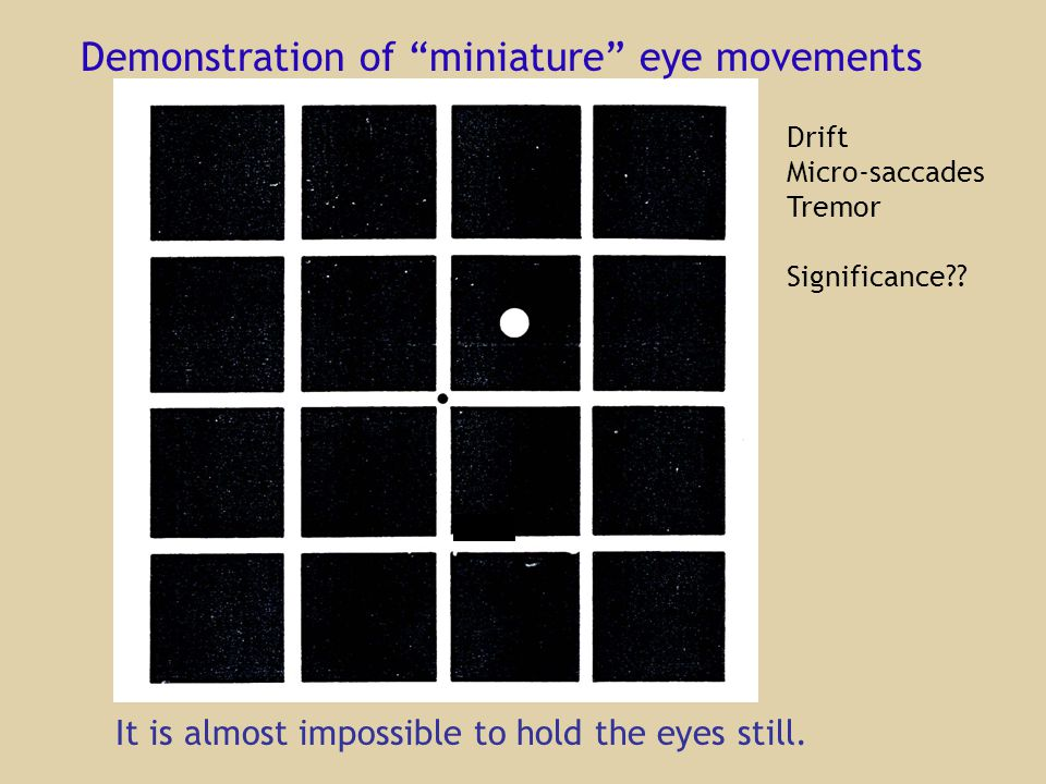 Demonstration of miniature eye movements It is almost impossible to hold the eyes still.