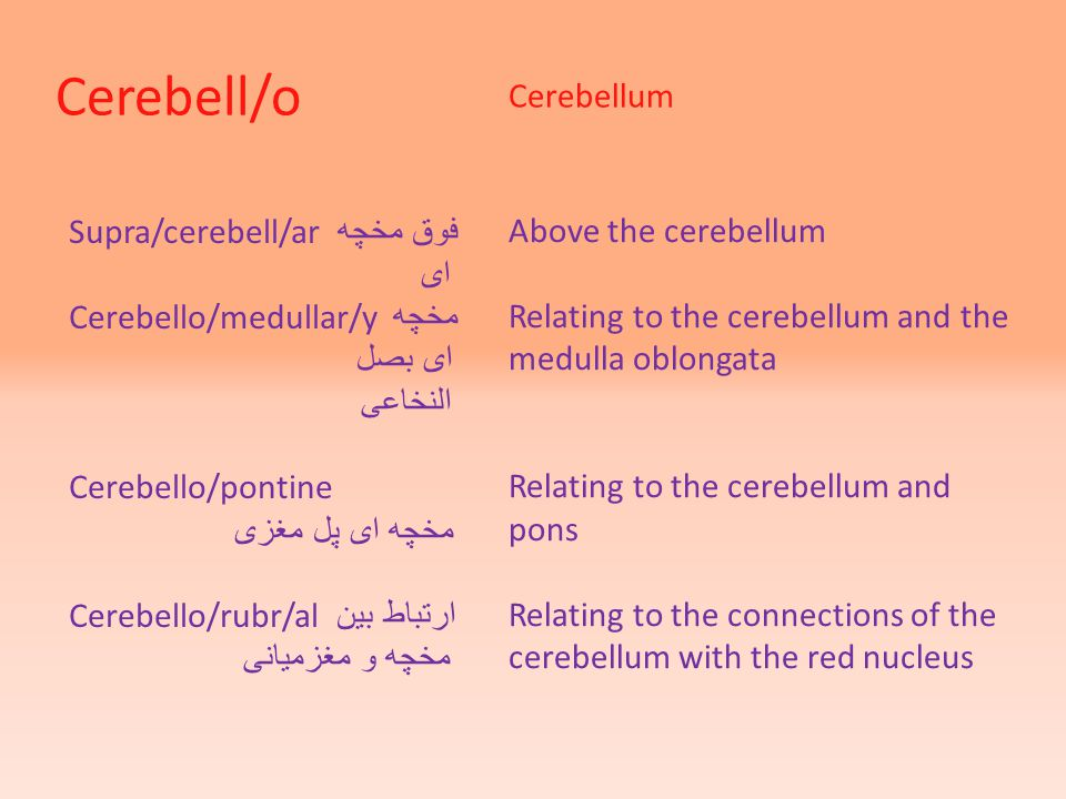 Cerebell/o Cerebellum Supra/cerebell/ar فوق مخچه ای Cerebello/medullar/y مخچه ای بصل النخاعی Cerebello/pontine مخچه ای پل مغزی Cerebello/rubr/al ارتباط بین مخچه و مغزمیانی Above the cerebellum Relating to the cerebellum and the medulla oblongata Relating to the cerebellum and pons Relating to the connections of the cerebellum with the red nucleus