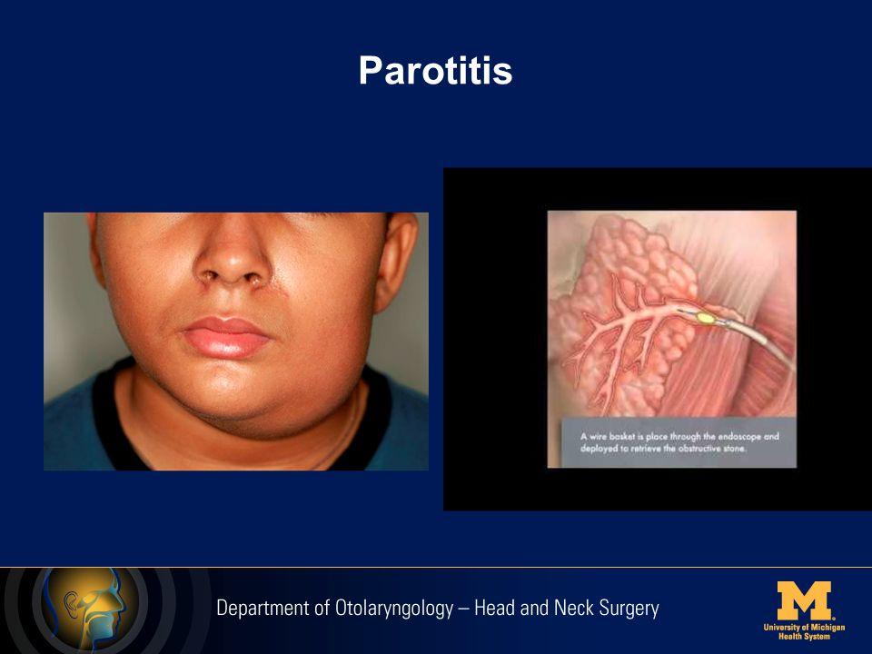 Congenital and Vascular Anomalies Branchial cleft cyst Thyroglossal duct cyst Laryngocele Hemangioma AVM Lymphatic malformation