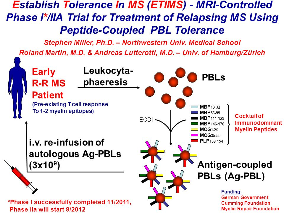 Establish Tolerance In MS (ETIMS) - MRI-Controlled Phase I*/IIA Trial for Treatment of Relapsing MS Using Peptide-Coupled PBL Tolerance Stephen Miller, Ph.D.