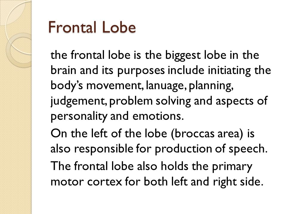 Effects on the frontal lobe Frontal lobe consists for abstracting thoughts and social skills and planning So if a stroke effects the frontal lobe then some of the problems they might have is enabling to solve a task.