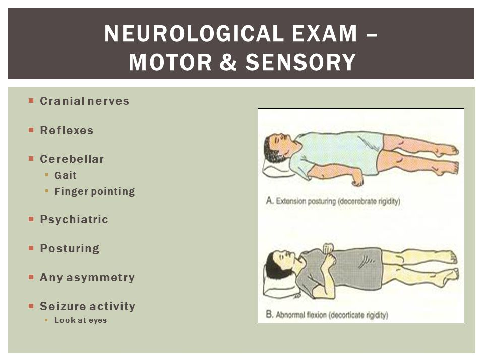  Cranial nerves  Reflexes  Cerebellar  Gait  Finger pointing  Psychiatric  Posturing  Any asymmetry  Seizure activity  Look at eyes NEUROLOGICAL EXAM – MOTOR & SENSORY