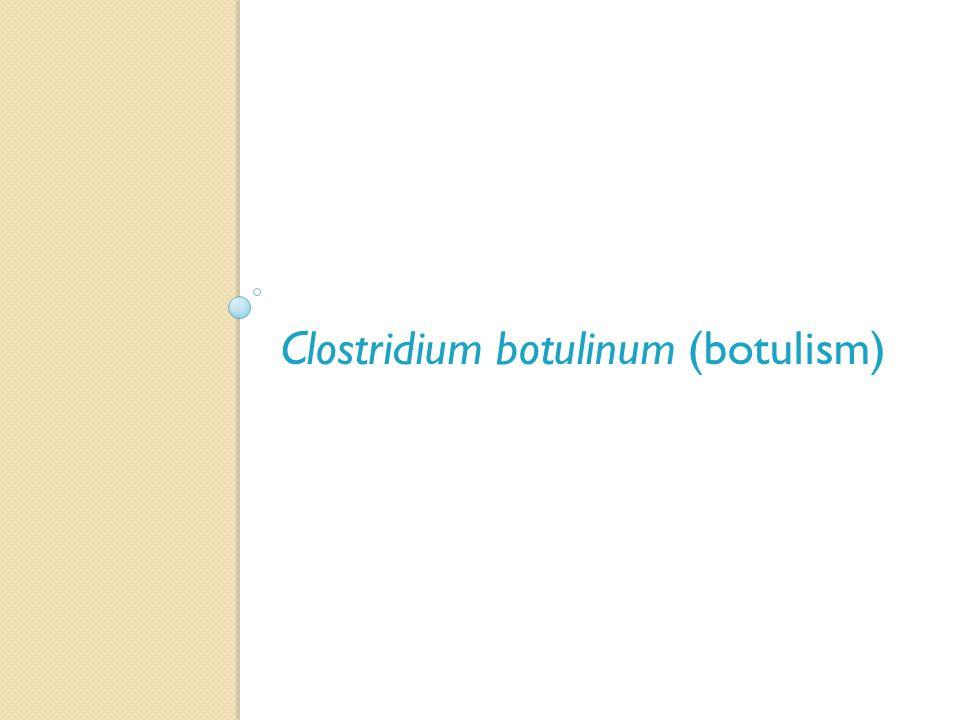 Clostridium botulinum (botulism)