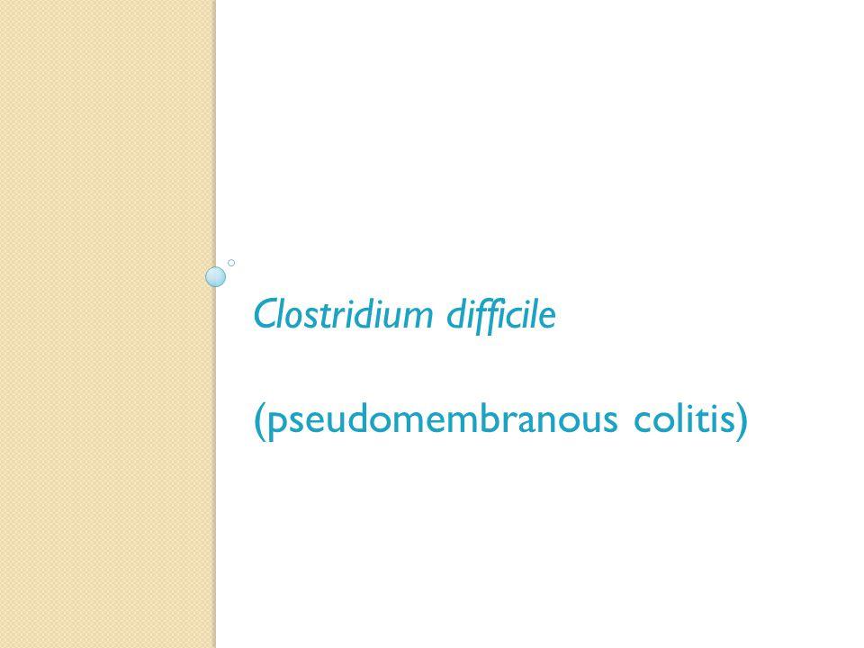 Clostridium difficile (pseudomembranous colitis)