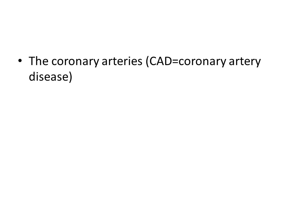 The coronary arteries (CAD=coronary artery disease)