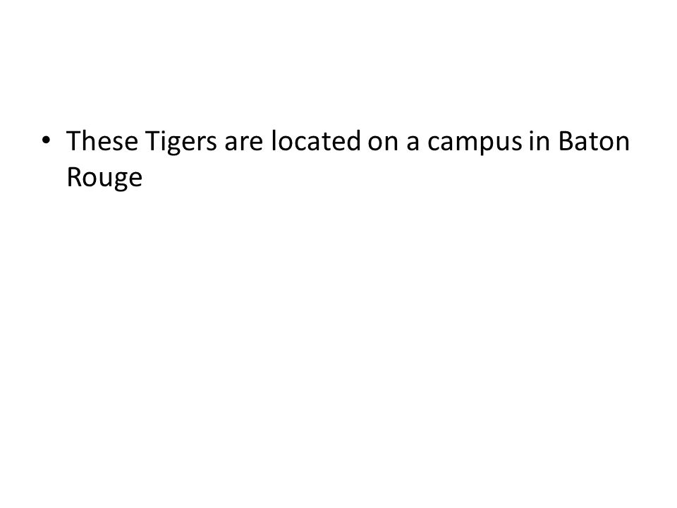 These Tigers are located on a campus in Baton Rouge
