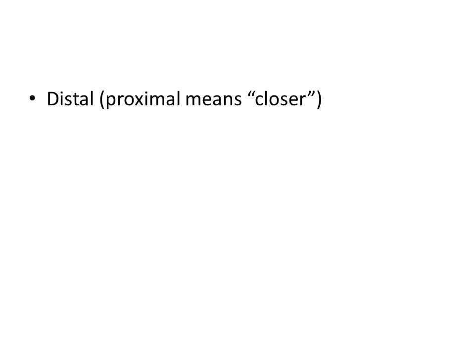 Distal (proximal means closer )
