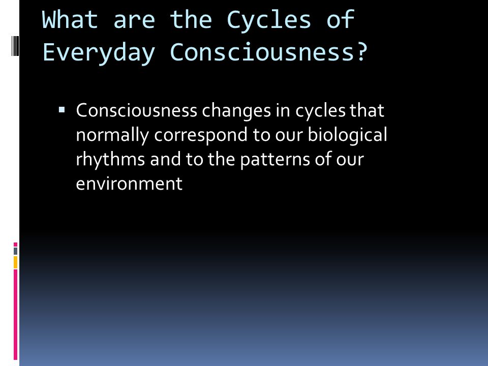 What are the Cycles of Everyday Consciousness.