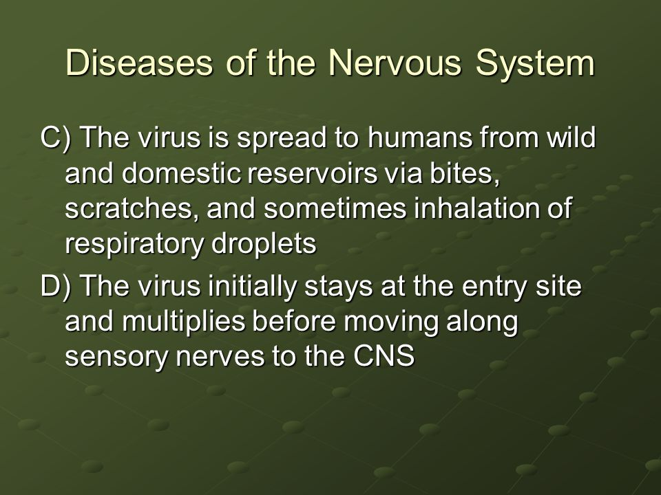 Diseases of the Nervous System C) The virus is spread to humans from wild and domestic reservoirs via bites, scratches, and sometimes inhalation of respiratory droplets D) The virus initially stays at the entry site and multiplies before moving along sensory nerves to the CNS