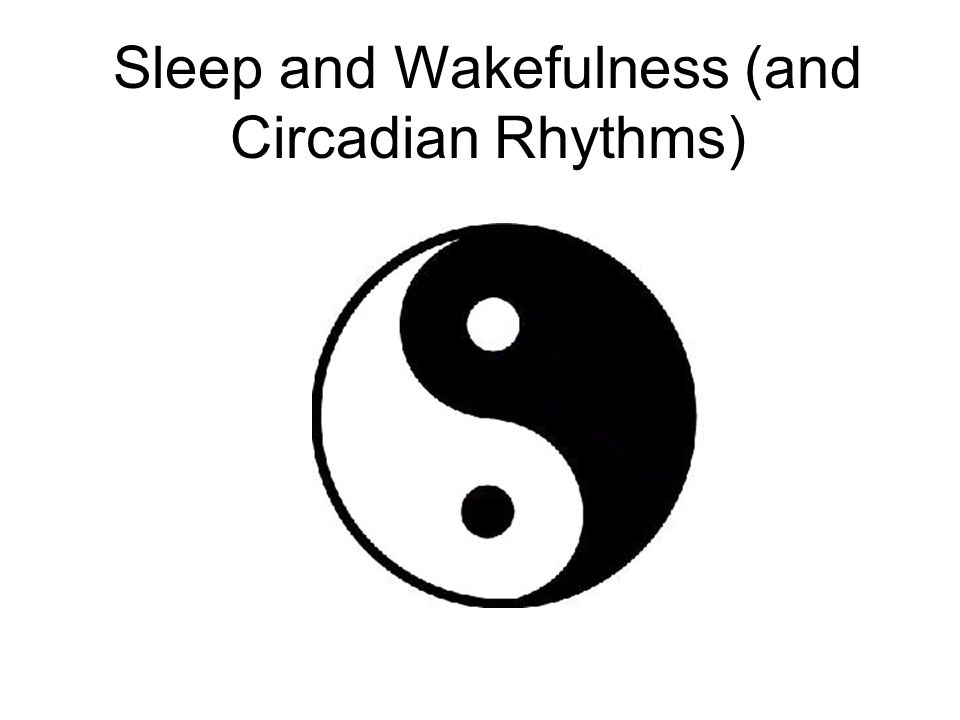 Sleep and Wakefulness (and Circadian Rhythms)