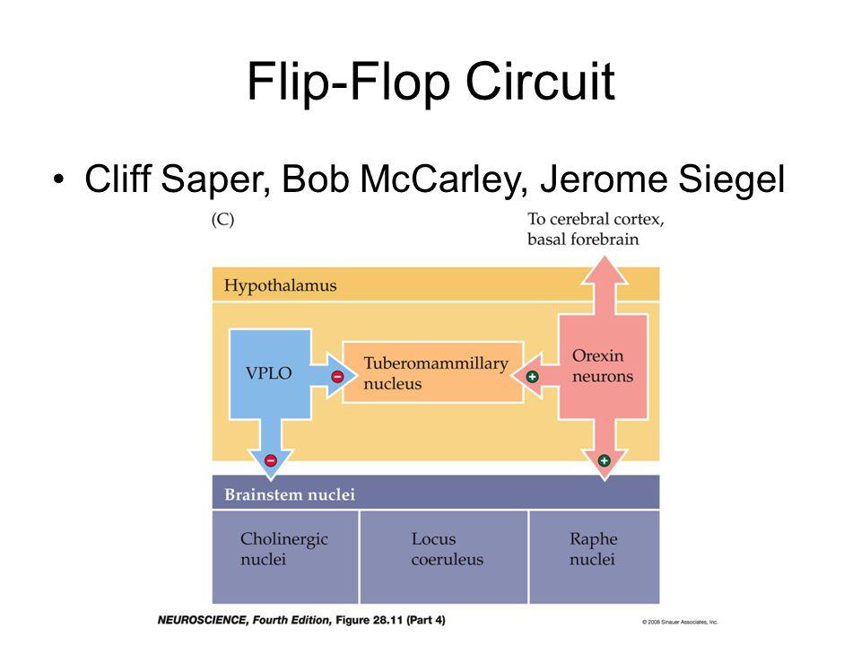 Flip-Flop Circuit Cliff Saper, Bob McCarley, Jerome Siegel