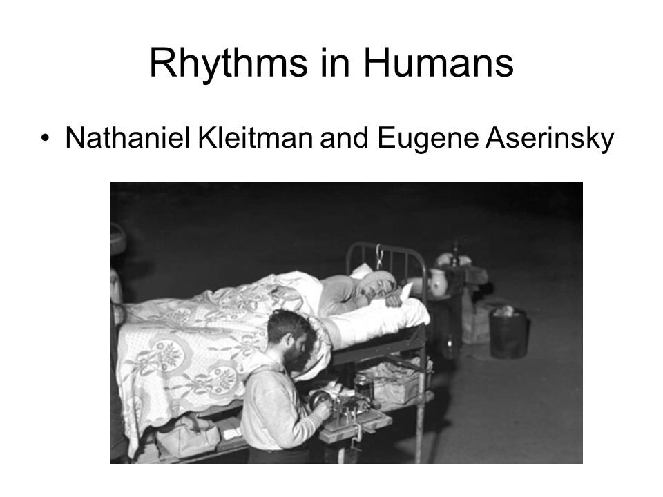 Rhythms in Humans Nathaniel Kleitman and Eugene Aserinsky