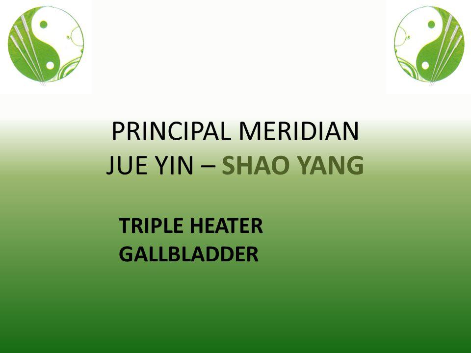 PRINCIPAL MERIDIAN JUE YIN – SHAO YANG TRIPLE HEATER GALLBLADDER