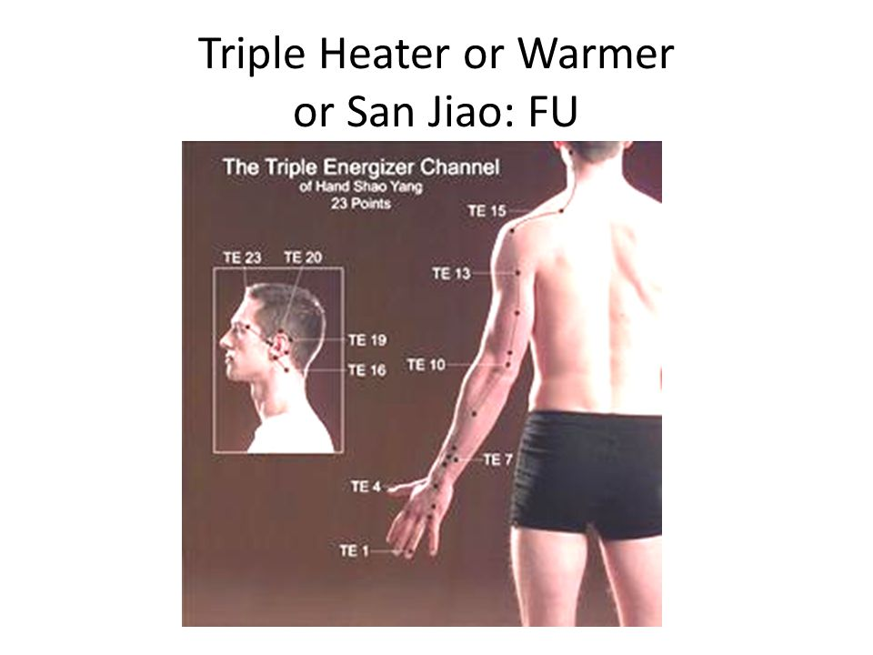 Triple Heater or Warmer or San Jiao: FU