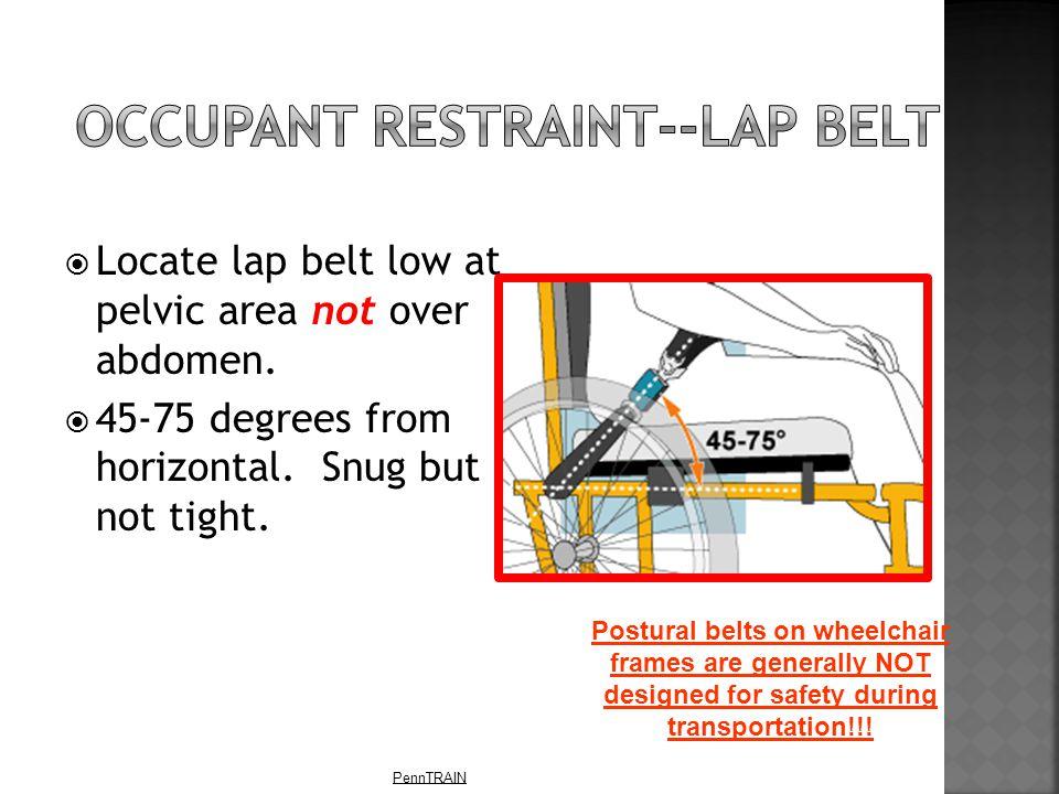 PennTRAIN  Locate lap belt low at pelvic area not over abdomen.