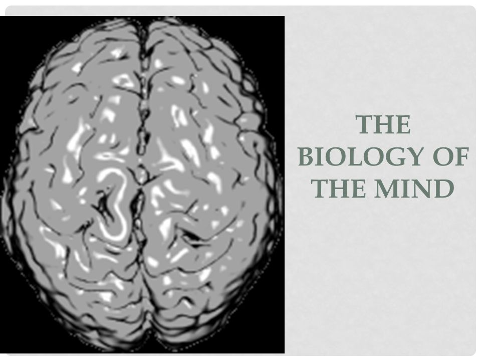 THE BIOLOGY OF THE MIND