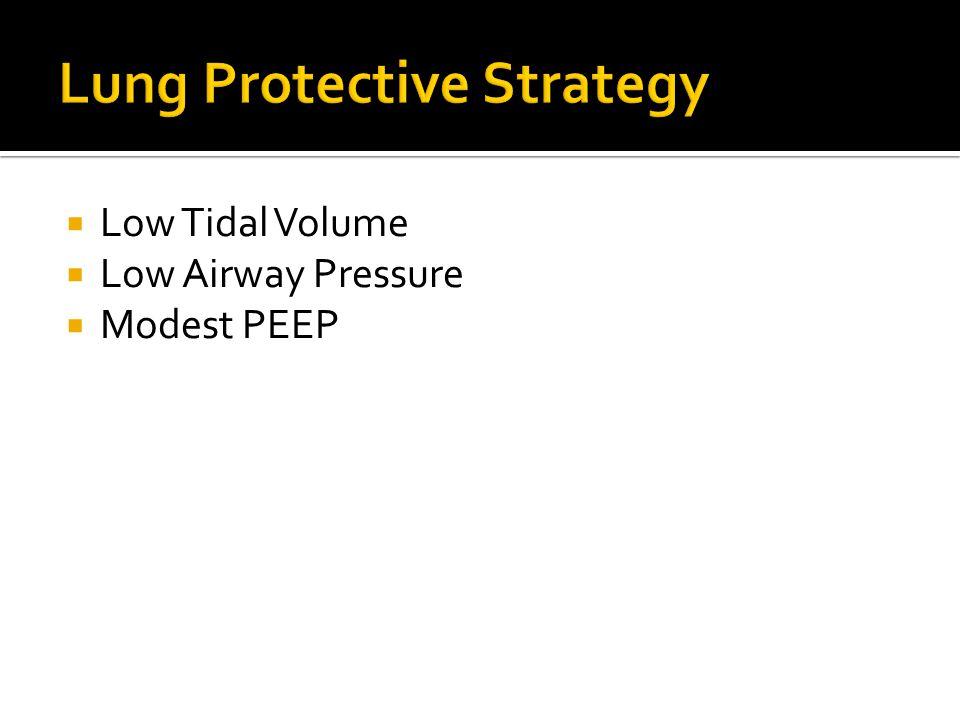  Low Tidal Volume  Low Airway Pressure  Modest PEEP