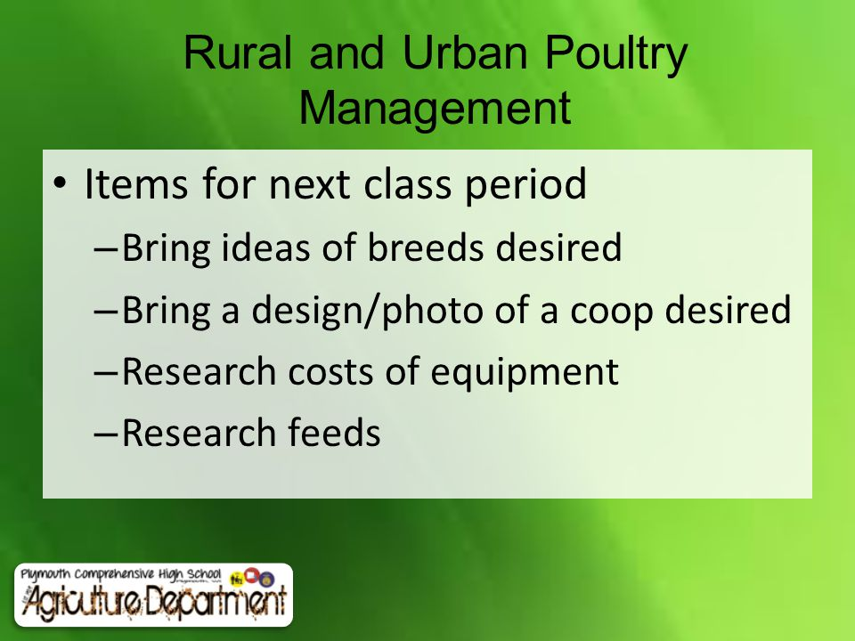 Rural and Urban Poultry Management Items for next class period – Bring ideas of breeds desired – Bring a design/photo of a coop desired – Research costs of equipment – Research feeds