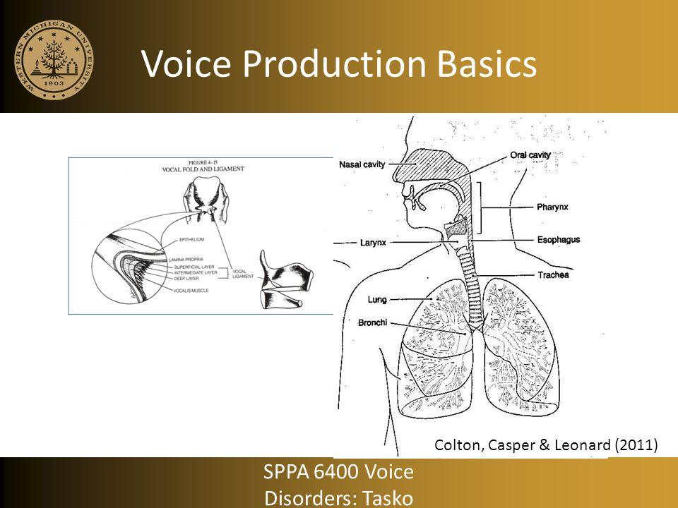 Voice Production Basics Colton, Casper & Leonard (2011) SPPA 6400 Voice Disorders: Tasko