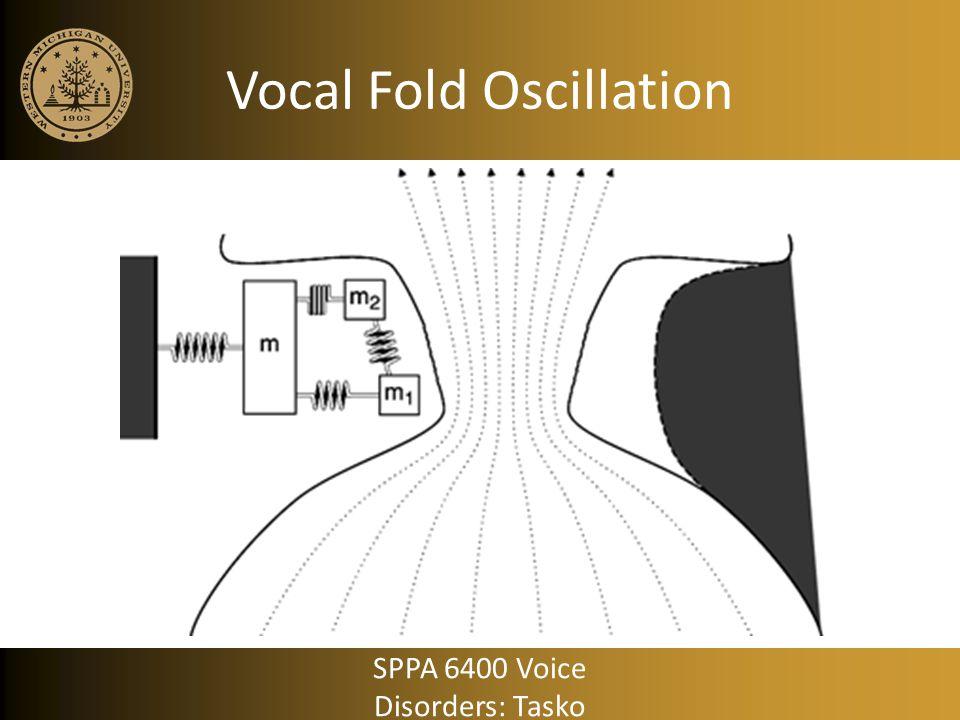 Vocal Fold Oscillation SPPA 6400 Voice Disorders: Tasko
