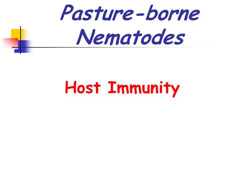 Pasture-borne Nematodes Host Immunity