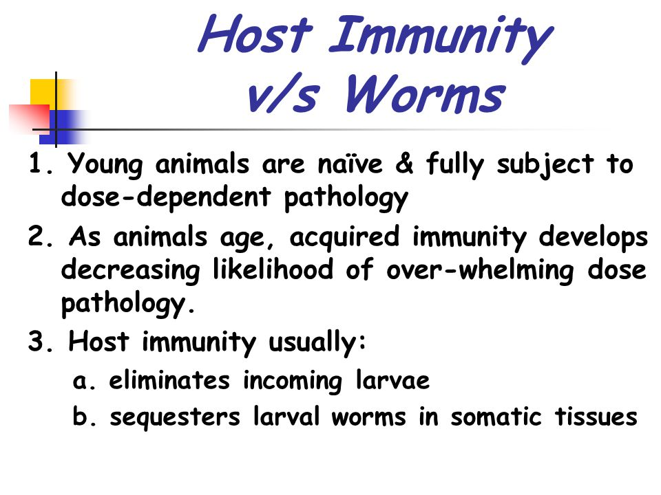 Host Immunity v/s Worms 1. Young animals are naïve & fully subject to dose-dependent pathology 2.