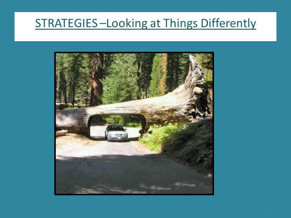 STRATEGIES –Looking at Things Differently 28