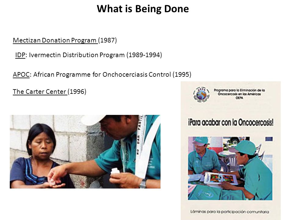 What is Being Done APOC: African Programme for Onchocerciasis Control (1995) The Carter Center (1996) IDP: Ivermectin Distribution Program (1989-1994) Mectizan Donation Program (1987)