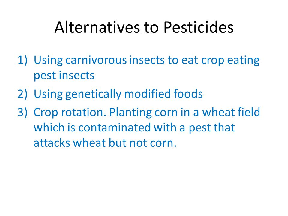 Alternatives to Pesticides 1)Using carnivorous insects to eat crop eating pest insects 2)Using genetically modified foods 3)Crop rotation.
