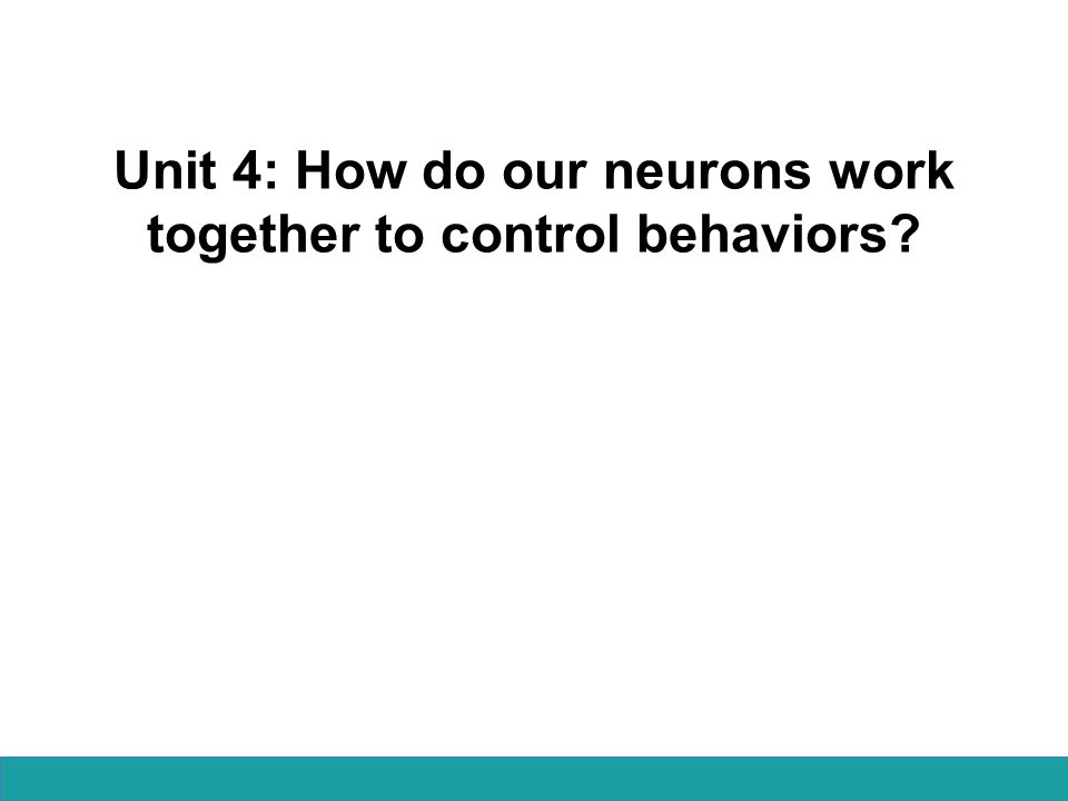 Unit 4: How do our neurons work together to control behaviors?