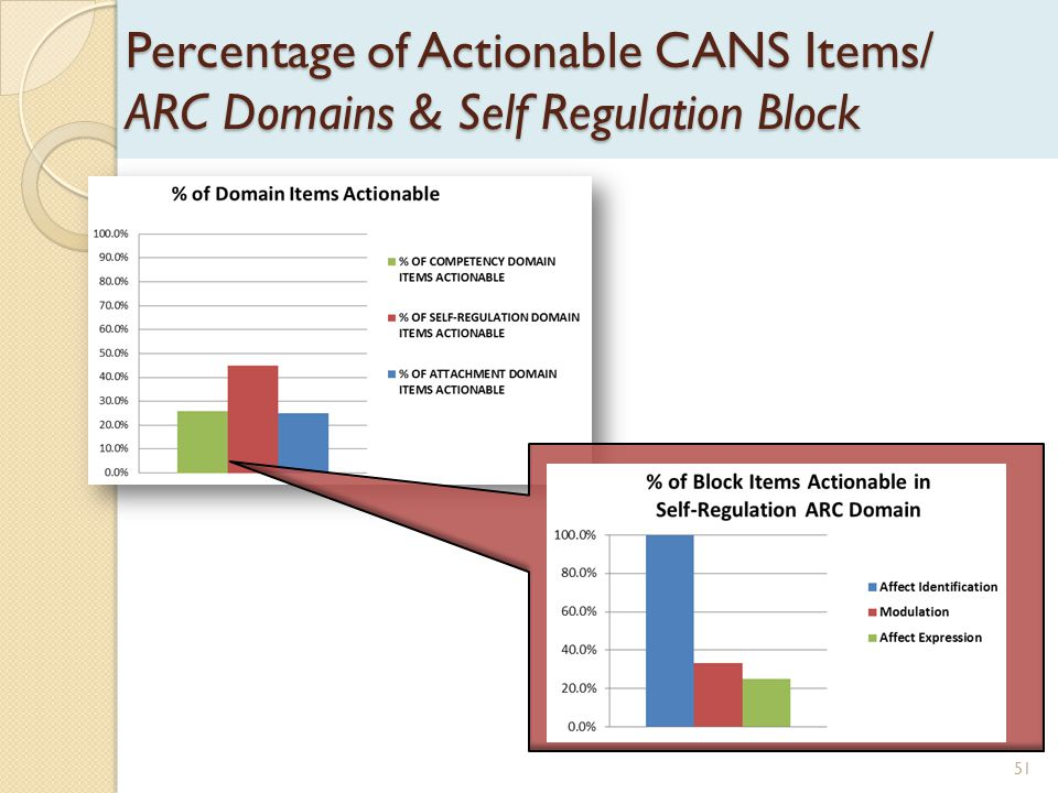 Percentage of Actionable CANS Items/ ARC Domains & Self Regulation Block 51