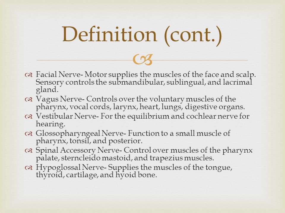   Facial Nerve- Motor supplies the muscles of the face and scalp.