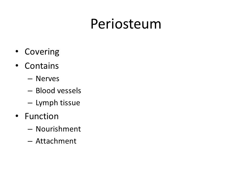 Periosteum Covering Contains – Nerves – Blood vessels – Lymph tissue Function – Nourishment – Attachment