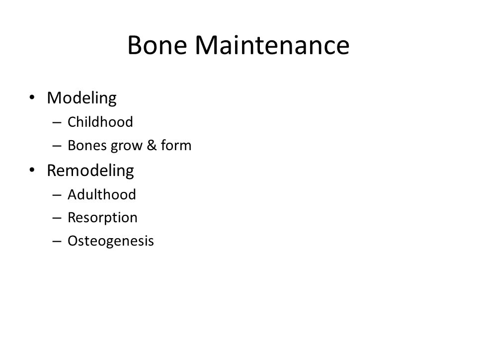Bone Maintenance Modeling – Childhood – Bones grow & form Remodeling – Adulthood – Resorption – Osteogenesis