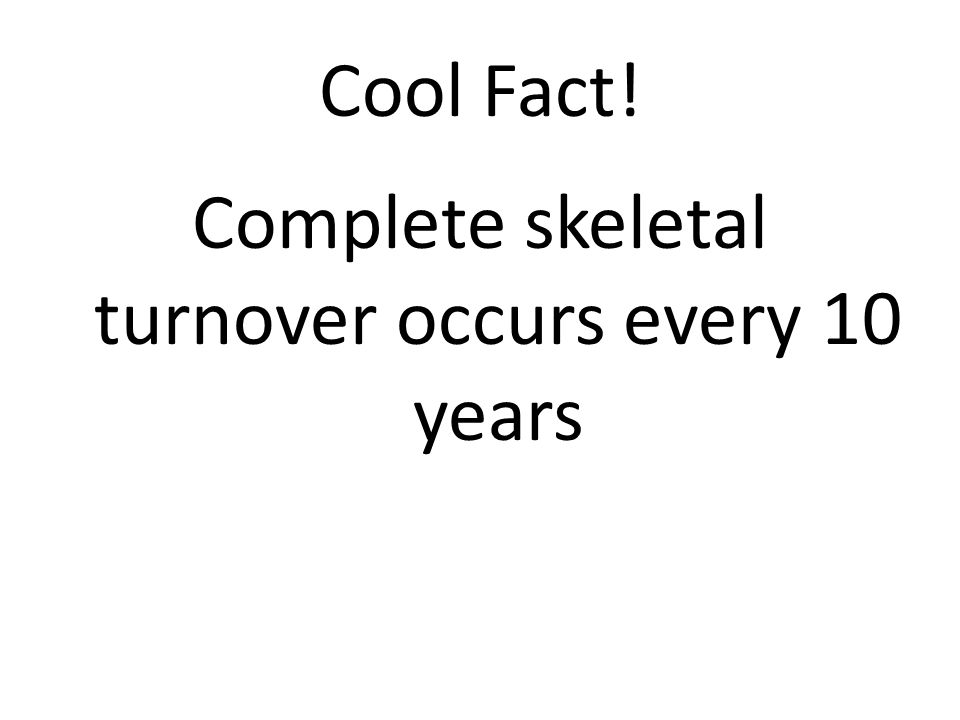 Cool Fact! Complete skeletal turnover occurs every 10 years