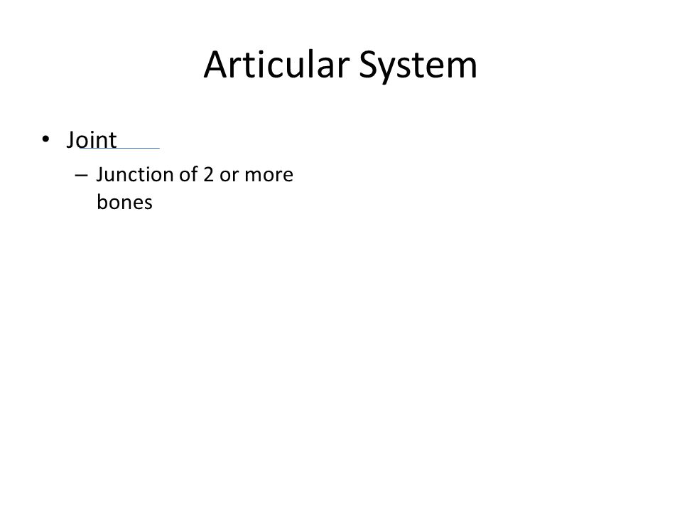 Articular System Joint – Junction of 2 or more bones