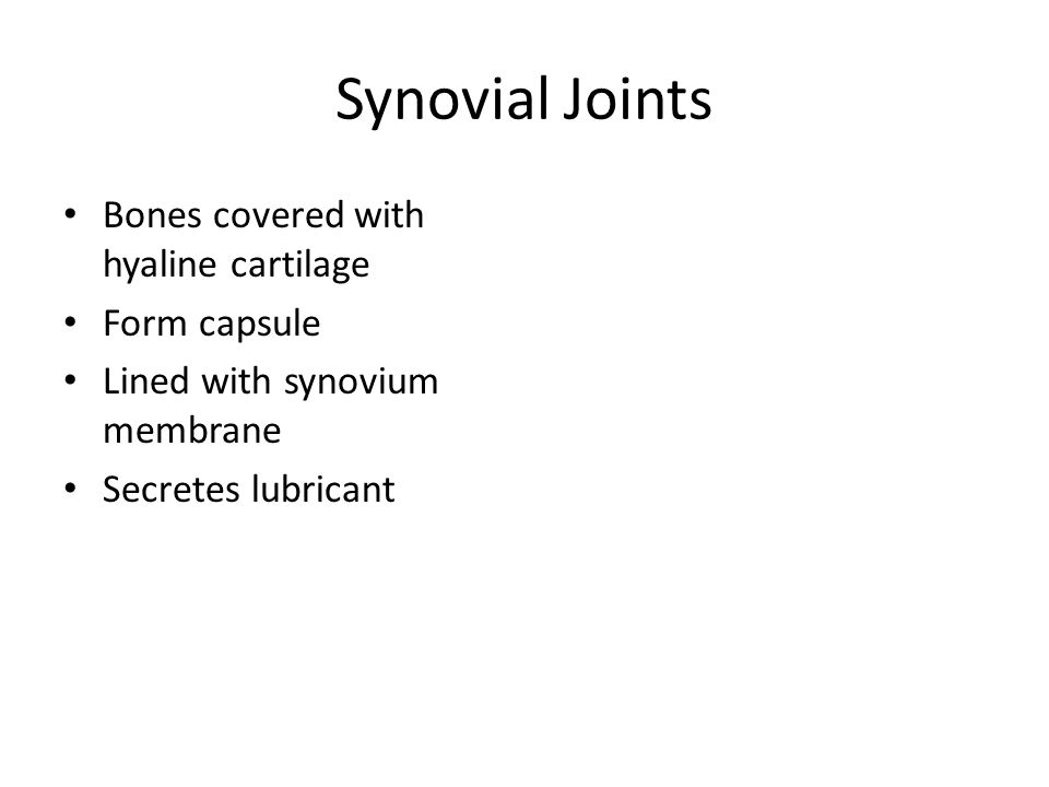 Synovial Joints Bones covered with hyaline cartilage Form capsule Lined with synovium membrane Secretes lubricant
