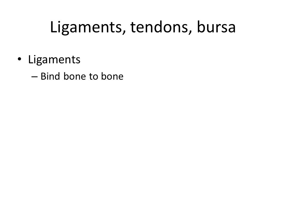 Ligaments, tendons, bursa Ligaments – Bind bone to bone
