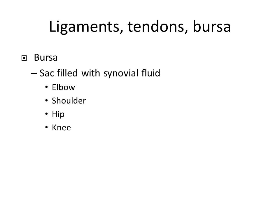 Ligaments, tendons, bursa  Bursa – Sac filled with synovial fluid Elbow Shoulder Hip Knee