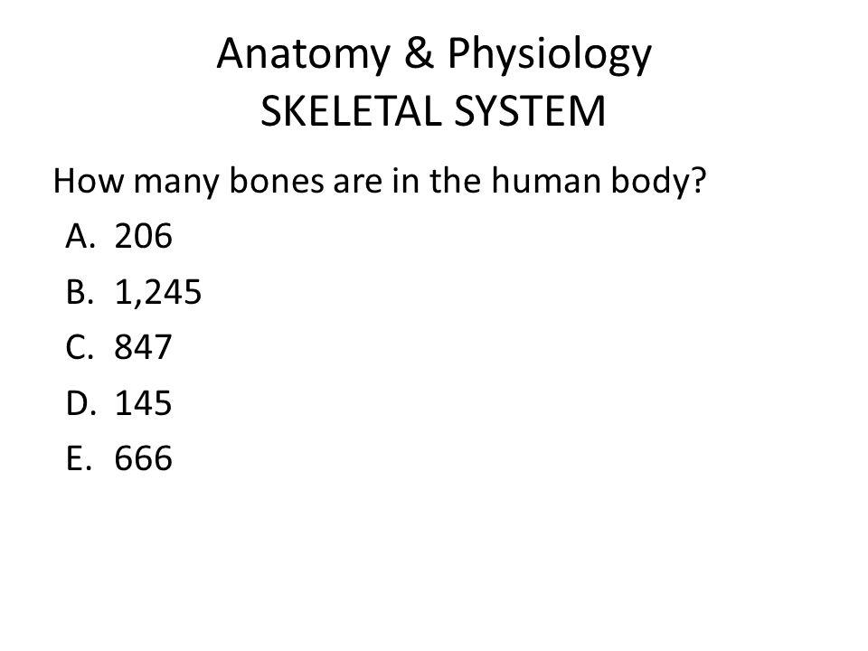 Bone Types Long bones Short bones Flat bones Irregular bones