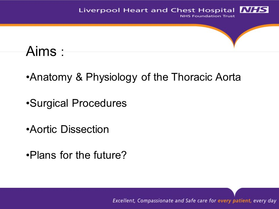 Aims : Anatomy & Physiology of the Thoracic Aorta Surgical Procedures Aortic Dissection Plans for the future