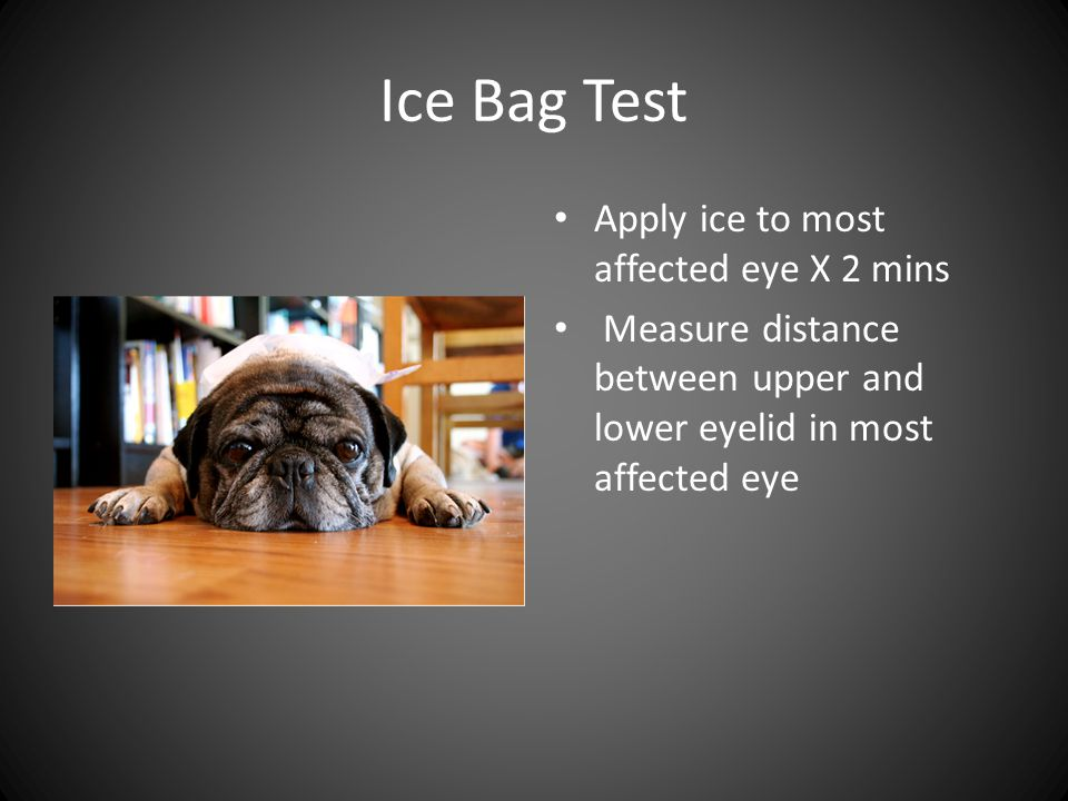 Ice Bag Test Apply ice to most affected eye X 2 mins Measure distance between upper and lower eyelid in most affected eye