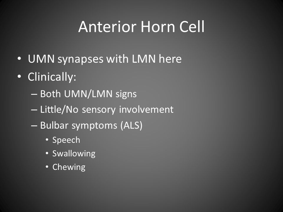 Anterior Horn Cell UMN synapses with LMN here Clinically: – Both UMN/LMN signs – Little/No sensory involvement – Bulbar symptoms (ALS) Speech Swallowing Chewing