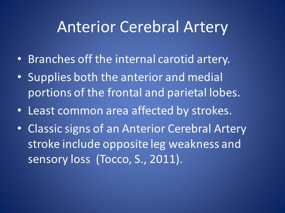 Anterior Cerebral Artery Branches off the internal carotid artery.