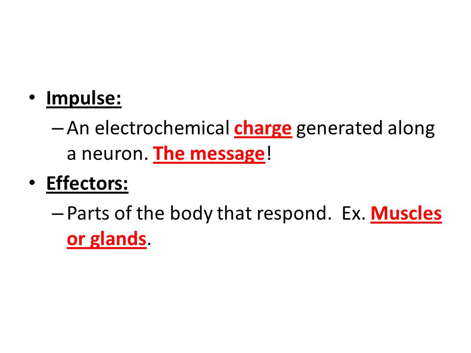 Nervous and Endocrine systems Stimulus: – Any change in the internal or external environment that causes a response. Response: – Reaction to a stimulu