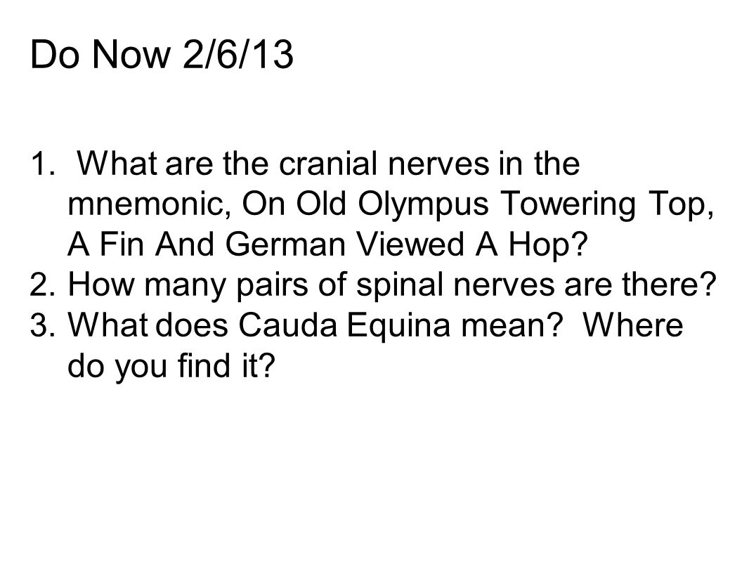 Do Now 2/6/13 1. What are the cranial nerves in the mnemonic, On Old Olympus Towering Top, A Fin And German Viewed A Hop? 2. How many pairs of spinal