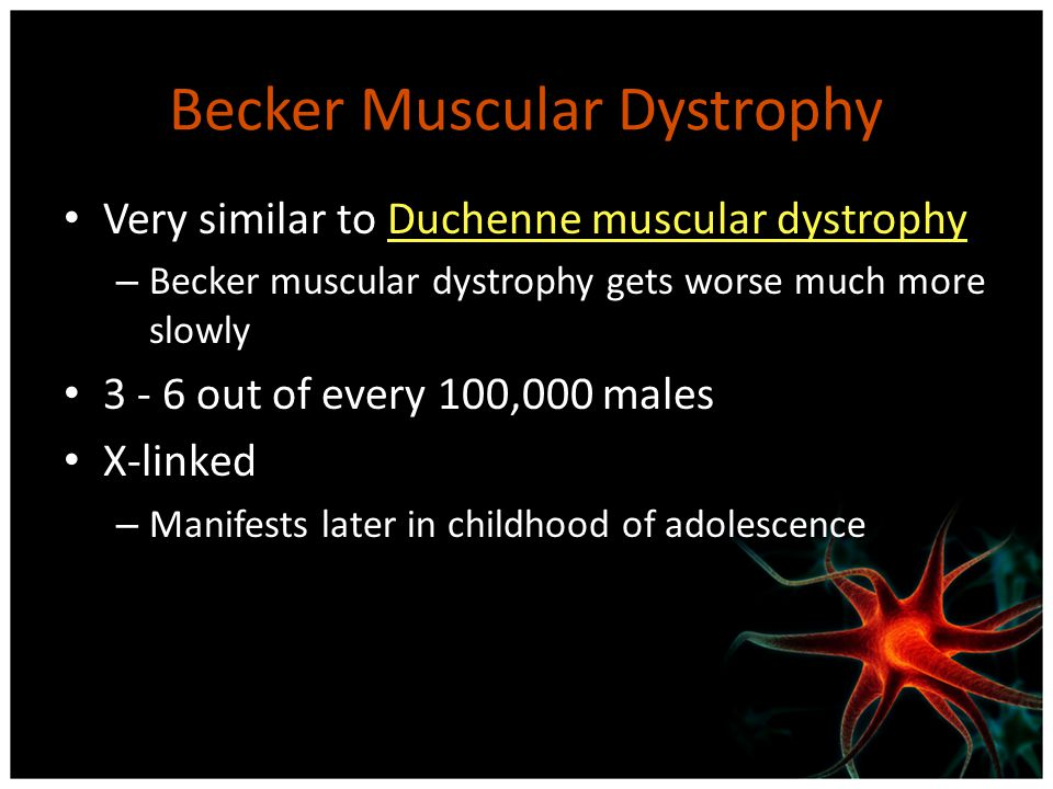 Becker Muscular Dystrophy Very similar to Duchenne muscular dystrophyDuchenne muscular dystrophy – Becker muscular dystrophy gets worse much more slow