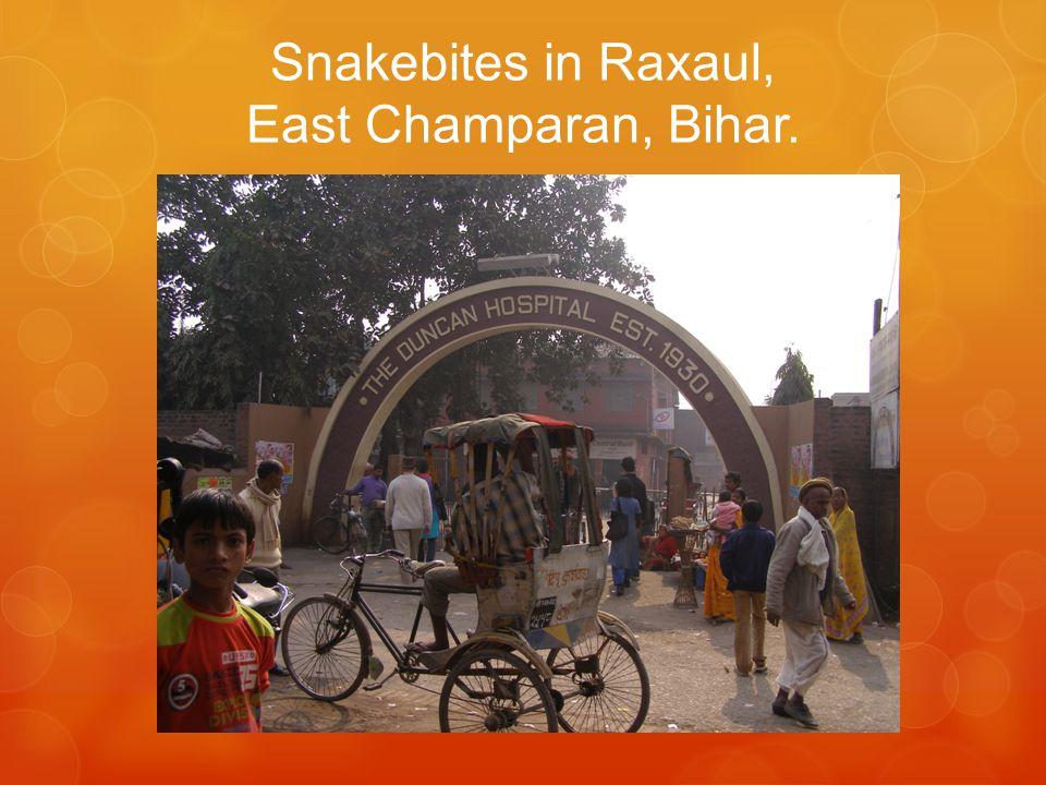 Snakebites in Raxaul, East Champaran, Bihar.